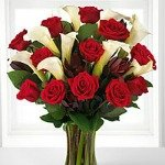Beautiful fresh red roses