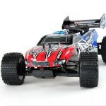 On-road & off-road RC cars