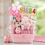 Adorable baskets to welcome new babies