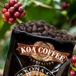 Delicious 100% Kona coffee